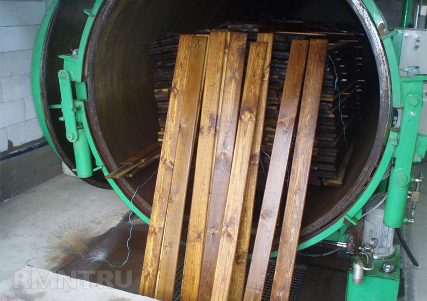 Як позбутися від термітів в деревяному будинку. Що робити, якщо терміти зявилися у вашому домі? харчування та ареал проживання