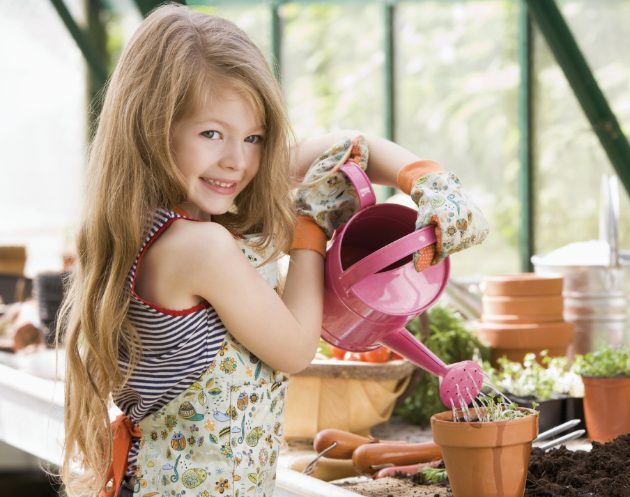 Правильний осінній догляд за плодовим садом – запорука врожаю майбутнього року. Догляд за кімнатними рослинами восени і взимку осінній догляд за кімнатними квітами