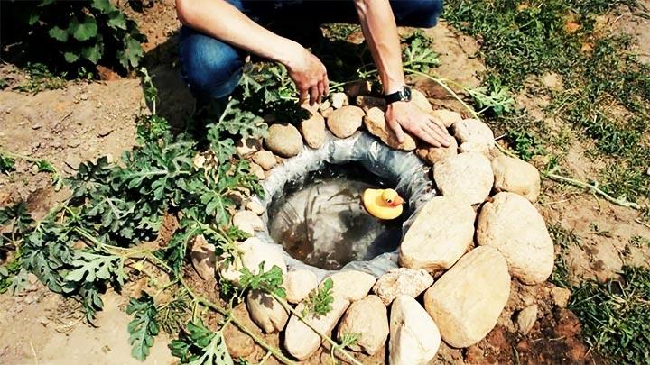 Великий ставок на ділянці своїми руками-водна гладь під вашими вікнами. Як зробити ставок на дачі своїми руками-поетапна технологія і помилки як зробити маленький ставок на дачі