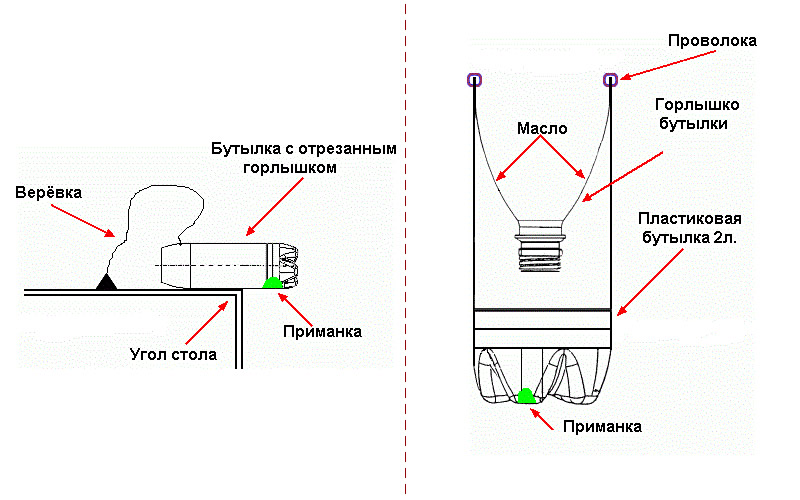 Як зробити саморобну мишоловку-ловимо гризунів простими способами. Як зробити пастку в домашніх умовах як зробити пастку в квартирі